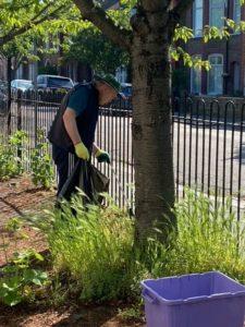 a volunteer gardening