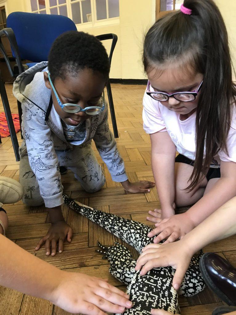 children touching a Tegu